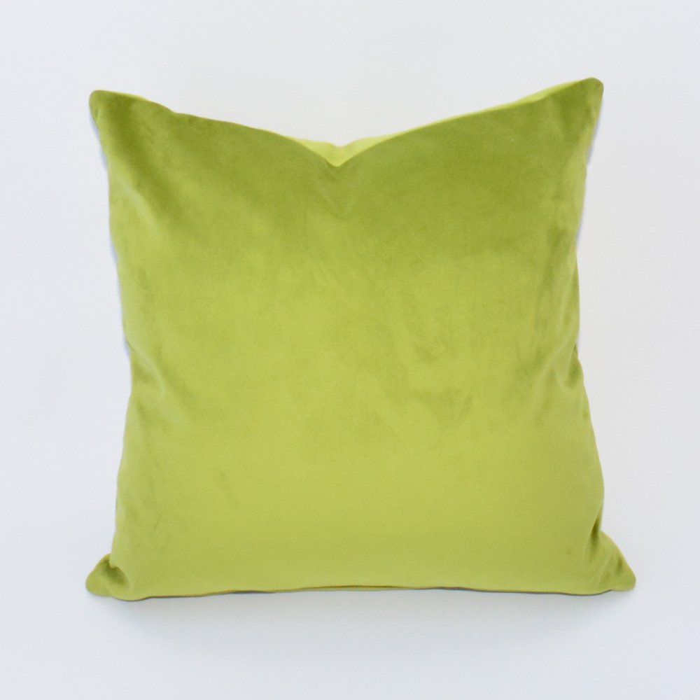 apple velvet pillow
